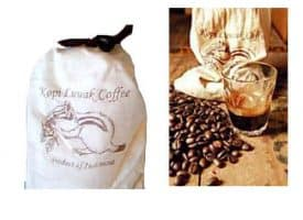 Volcanica Coffee Kopi Luwak Medium Roast 16oz