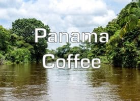 Volcanica Coffee Panama Medium Roast 16oz