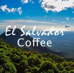Volcanica Coffee El Salvador Coffee Medium Roast 16oz