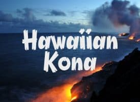 Volcanica Coffee Hawaiian Kona Extra Fancy Coffee Medium Roast 16oz