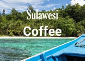 Volcanica Coffee Sulawesi Medium Roast 16oz