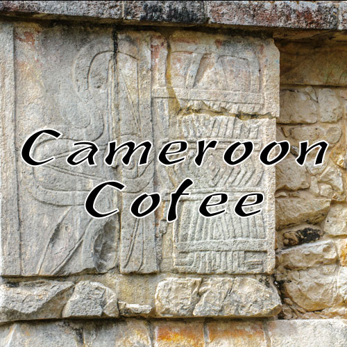 Volcanica Coffee Cameroon Original Coffee Medium Roast 16oz