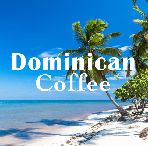 Volcanica Coffee Dominican Coffee Medium Roast 16oz