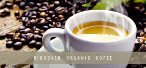 Biodegradable and Organic K cups® – the Future of K cups®
