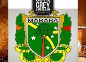 Out of the Grey Coffee Organic Maraba Bourbon Whole Bean Medium Roast Coffee 12oz