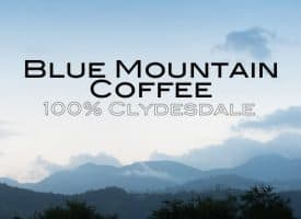 Volcanica Coffee Blue Mountain Whole Beam Medium Roast Coffee 16oz - Clydesdale 100%