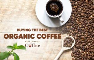 Tips for Choosing the Best Organic Coffee for Your Taste Buds