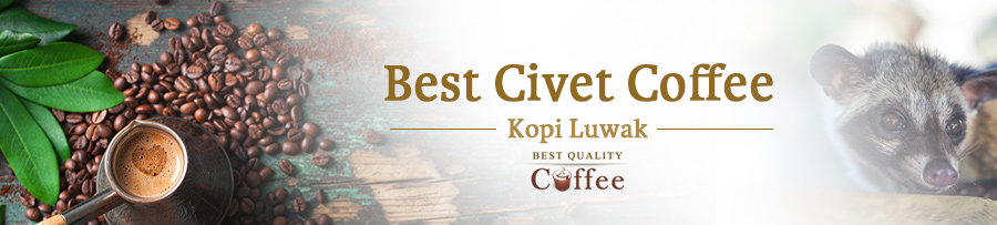 Civet Coffee Review