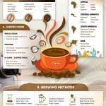 Choosing Your Coffee – Coffee Infographic