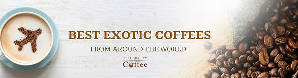 Best Exotic Coffee from Around the World