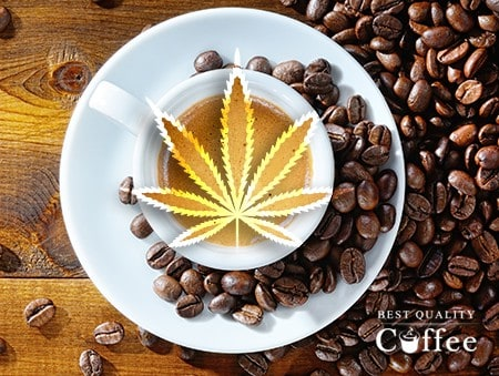 Best CBD Coffee Brands