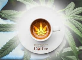 Best CBD Coffee Discount Codes