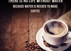 Best Coffee Memes to Make You Smile