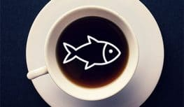 Why Does My Coffee Smell Like Fish