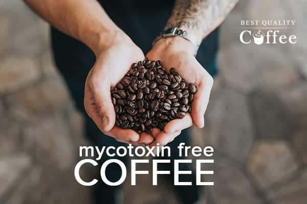 Mycotoxins in Coffee