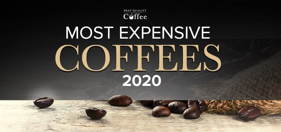 Most Expensive Coffee of 2020