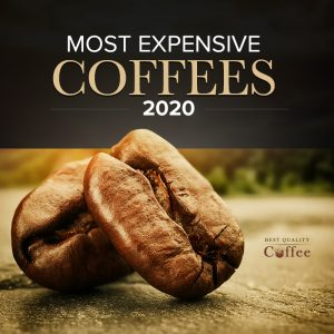 Most Expensive Coffees