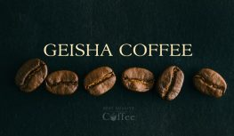 Geisha Coffee / Gesha Coffee