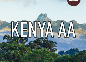 Kenya AA Decaf Coffee