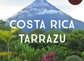 Costa Rica Decaf Tarrazu Coffee